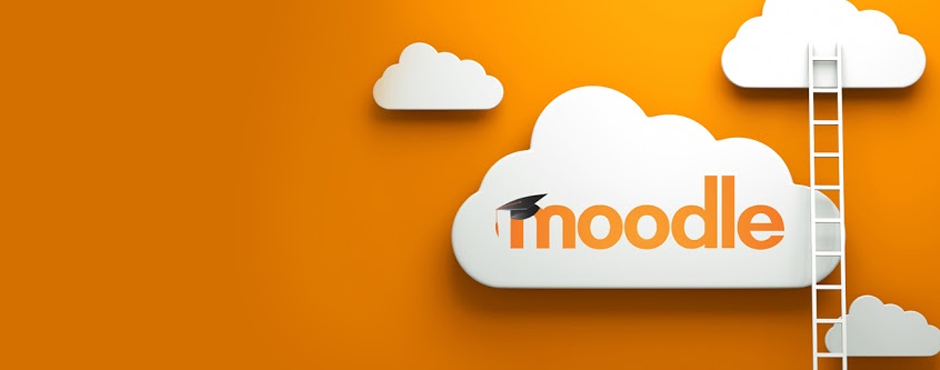 Serious Moodle Flaw Found